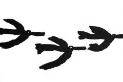 14_trois_oiseaux